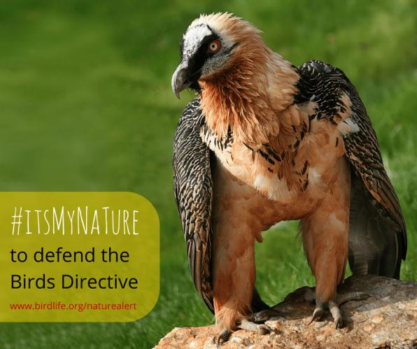 Συναγερμός για τη φύση στην Ευρώπη