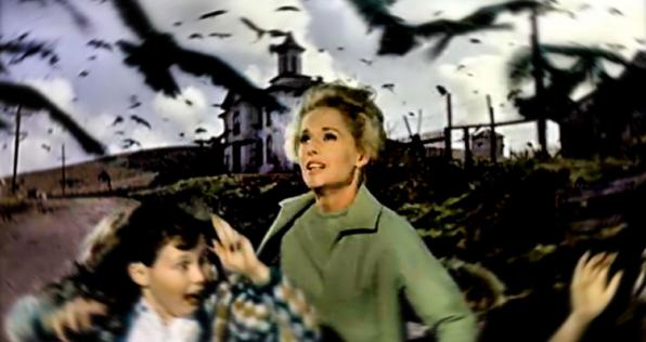 Παρασκευή 28.04, Προβολή: The Birds- Τα πουλιά