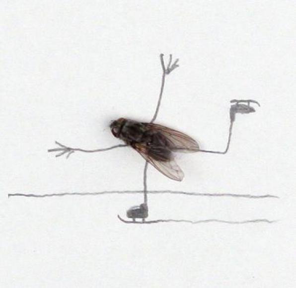 Πέμπτη 22/3, Θέατρο κούκλας: « Η ΜΥΓΑ» με την Λίλιαν Χαριτάκη Ασίμου