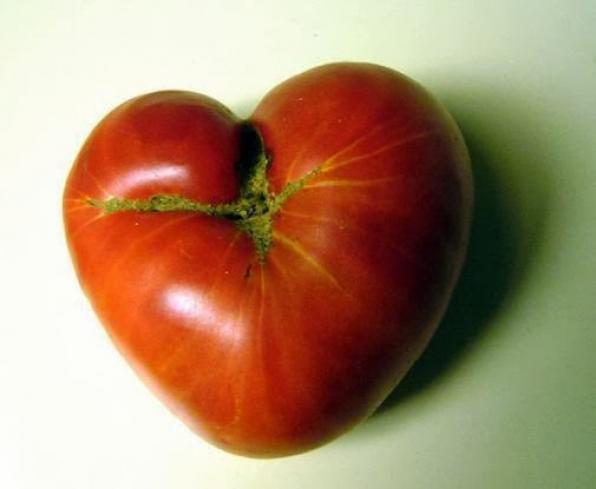 Σπέρνουμε Σπόρους Αγάπης - 14 Φλεβάρη 2014